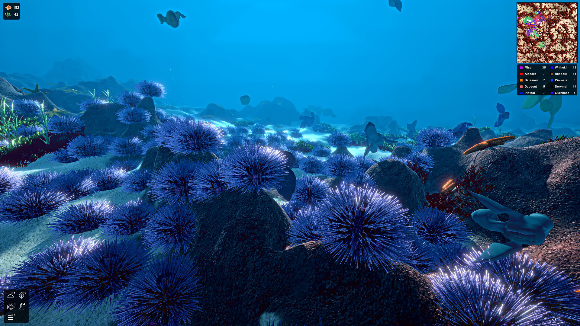 If you've seen an urchin time lapse, you know the drill.