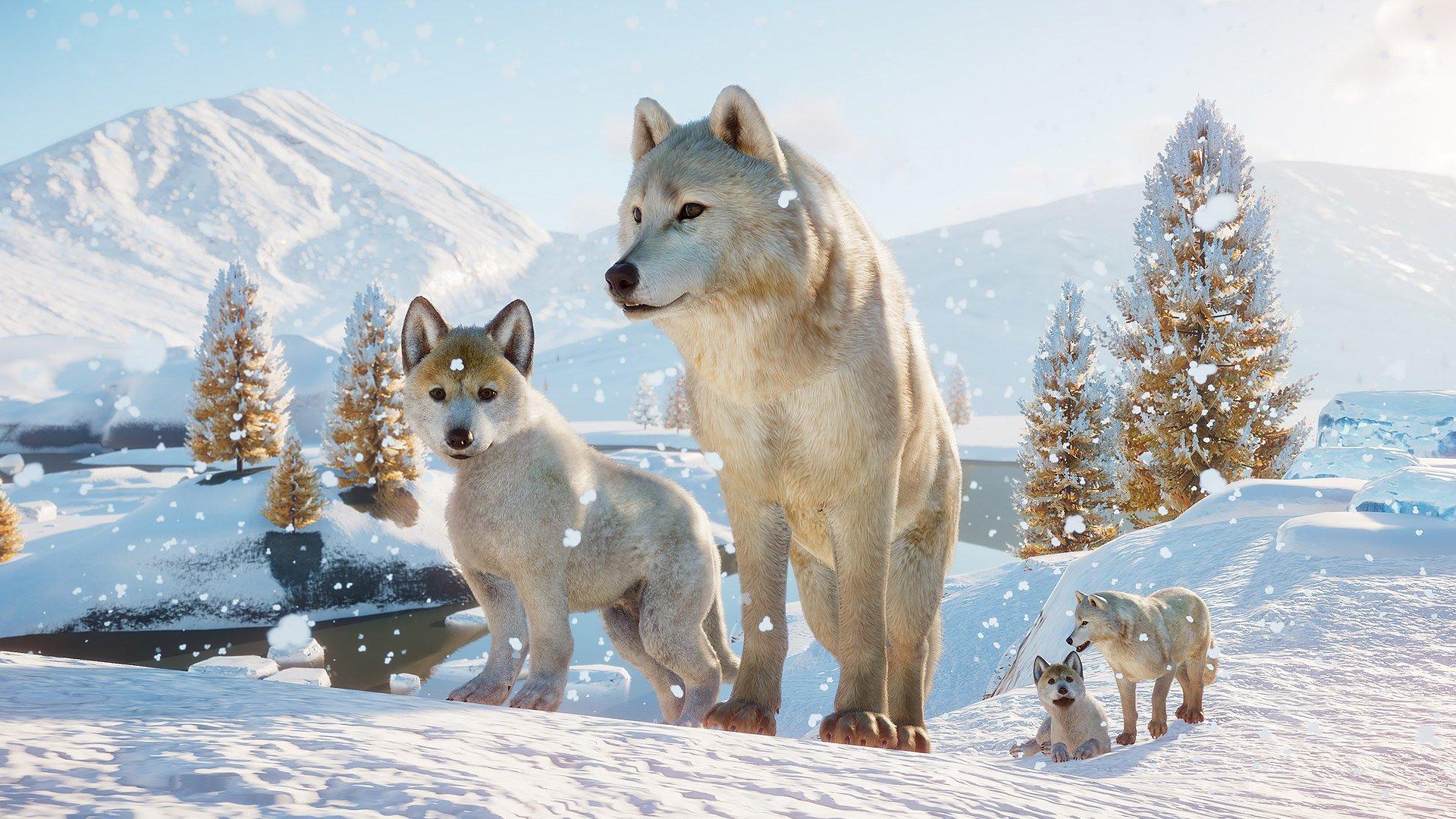 Planet Zoo Arctic wolf